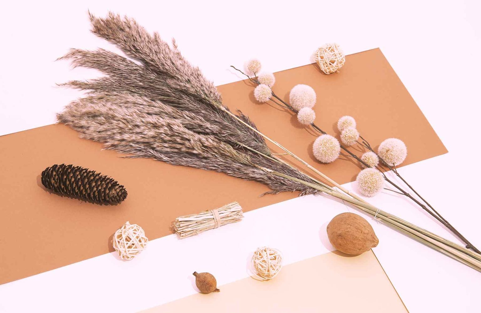 fall-winter-cozy-background-with-plant-autumn-deco-TQ8BH85.jpg